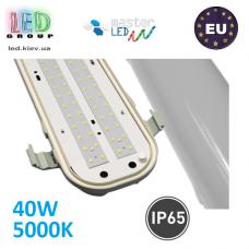 Светодиодный линейный светильник, master LED, 40W, 5000K, IP65, PF>0.9, RA>80, TR-P, ABS + PC. Польша!