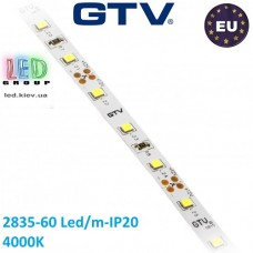 Светодиодная лента GTV, 12V, SMD 2835, 60 led/m, 6W, IP20, 750Lm, 4000K - белый нейтральный, Premium. Гарантия - 24 месяца