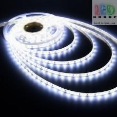 Светодиодная лента 12V, 2835, 60 led/m, 4.4W, IP65, 360Lm, 6500K - белый холодный, Standart. Гарантия - 12 месяцев.