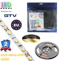 Светодиодная лента GTV, 12V, SMD 2835, 60 led/m, 6W, IP20, 750Lm, 3200K - белый тёплый, Premium. Гарантия - 24