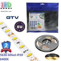 Светодиодная лента GTV, 12V, 5630, 60 led/m, 16W, IP20, 1700Lm, 6400K - белый холодный, Premium. Гарантия - 24 месяца.