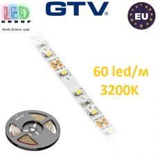 Светодиодная лента GTV, 12V, 3528, 60 led/m, 4.8W, IP20, 300Lm, 3200K - белый тёплый, Standart. Гарантия - 12 месяцев.
