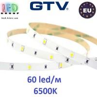 Светодиодная лента GTV, 12V, 2835, 60 led/m, 4.8W, IP20, 300Lm, 6500K - белый холодный, Econom. Гарантия - 6 месяцев.