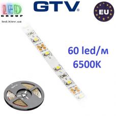 Светодиодная лента GTV, 12V, 3528, 60 led/m, 4.8W, IP20, 300Lm, 6500K - белый холодный, Standart. Гарантия - 12 месяцев.