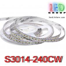 Светодиодная лента 12V, 3014, 240 led/m, 24W, IP20, 2100Lm, 6500K-белый холодный, Standart. Гарантия - 12.