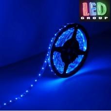 Светодиодная лента синяя LED S3528-60B