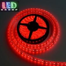 Светодиодная лента 12V, 2835, 60 led/m, IP65, красный, Standart. Гарантия - 12 месяцев.