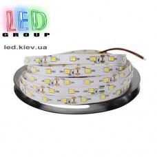 Светодиодная LED лента S2835-60WW Econom