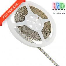 Светодиодная лента 12V 3528 LED S3528-120CW Econom