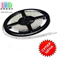 Светодиодная лента  12V LED S3528-60СW Econom