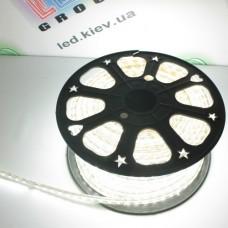 Светодиодная лента SMD 5050 LED S5050-60NW-IP67-220V