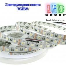 Светодиодная лента 12V, 5050, 60 led/m, 14.4W, IP20, RGBCW (RGBБелый холодный 6500К), Standart. Гарантия - 12 месяцев.