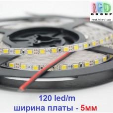 Светодиодная лента 12V, 2835, 120 led/m, 5мм, 9.6W, IP20, 6500K-белый холодный, Standart. Гарантия-12 месяцев.