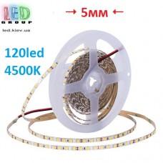 Светодиодная лента 12V, 2835, 120 led/m, 5мм, 9.6W, IP20, 850Lm, 4500K-белый нейтральный, Standart. Гарантия-12 месяцев