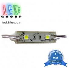 Светодиодный модуль LED M5054-2W(W)