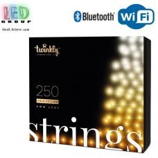 Светодиодная LED гирлянда Twinkly Strings, 23.5/20м, SMART, AWW - оттенки белого, 250 led, Bluetooth + WiFi, Gen II, IP44, кабель чёрный