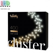 Светодиодная LED гирлянда Twinkly Cluster, SMART, AWW, 400 led, Bluetooth + WiFi, Gen II, IP44, кабель чёрный