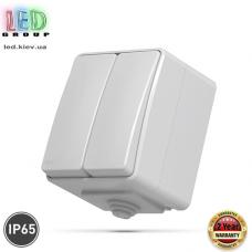 Выключатель двухклавишный, наружный, IP65, серый