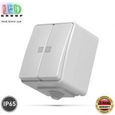 Выключатель двухклавишный, наружный, с подсветкой, IP65, серый