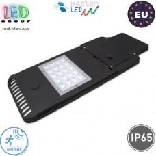 Светодиодный LED прожектор, master, LED 20W, 20xSMD 2835, 5500-6000K, IP65, на солнечной батарее, с датчиком сумерек и движения, консольный, алюминиевый, чёрный. Польша!