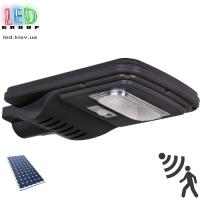Светодиодный LED прожектор, на солнечной батарее, с датчиком движения, консольный, IP66 - 30W